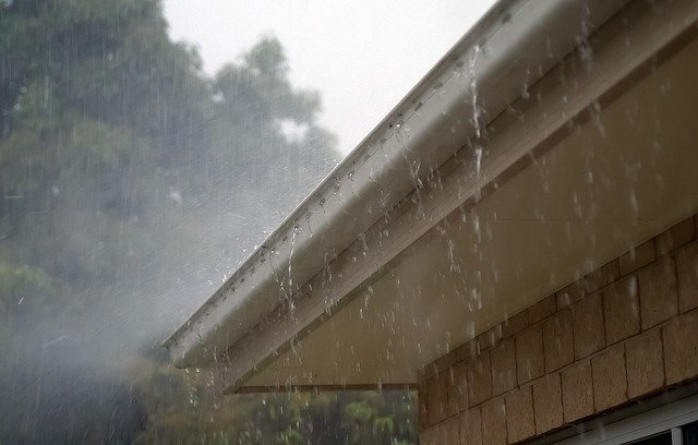 starting a gutter cleaning business