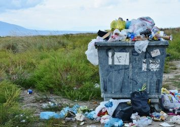 small business should deal with waste disposal